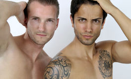 Beauty men Stock Image