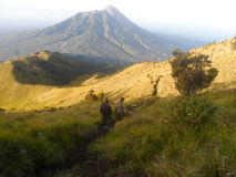 The Beauty of Merbabu Royalty Free Stock Image