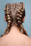 Beauty model with braids from back Royalty Free Stock Photos