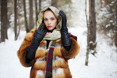 Beauty model girl in winter forest. beautiful young Woman in fashionable Fur Coat and scarf Stock Image