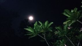 The beauty of moon stock images