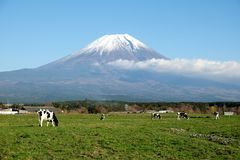 The beauty of Mount Fuji stock image
