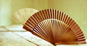 A fan to seduce. The beauty and the mystery of Asia Royalty Free Stock Photography