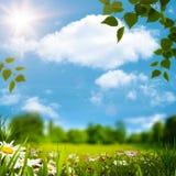 Beauty natural landscape Stock Image