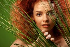 Beauty natural portrait Stock Image