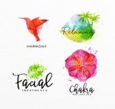 Beauty natural spa symbols bird Stock Photo