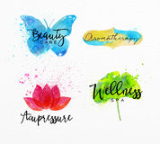 Beauty natural spa symbols butterfly Stock Images