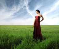 Beauty in the nature Stock Images