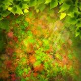Beauty Nature. Royalty Free Stock Image