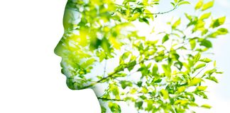 Double exposure woman profile with tree foliage. Beauty, nature and ecology concept - portrait of woman profile with green tree foliage with double exposure royalty free stock photo