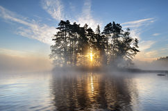 Beauty In Nature. Morning light by the lake Royalty Free Stock Photos