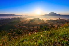 Beauty nature morning Stock Images