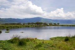 Beauty of nature near Lake Manyara with hippos Royalty Free Stock Photography