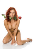 Beauty nude woman with rose Royalty Free Stock Photos