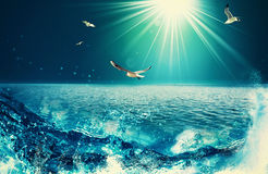 Beauty Ocean. Beauty natural backgrounds for your design stock illustration