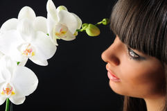 Beauty and the orchid Stock Photo