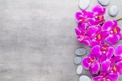 Beauty orchid on a gray background. Spa scene. Orchid and spa stones on a stone background. Spa and wellnes scene Stock Photo