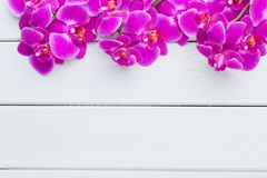 Beauty orchid on a gray background. Spa scene. Orchid and spa stones on a stone background. Spa and wellnes scene Stock Images