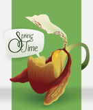 Beauty Orchid with Speech Balloon Announcing Springtime, Vector Illustration Stock Photos