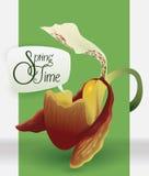 Beauty Orchid with Speech Balloon Announcing Springtime, Vector Illustration Stock Photos