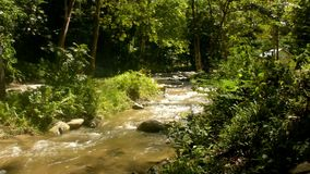 The beauty of the Paniki river that flows in the rainy season. With shady rocks and green trees stock footage