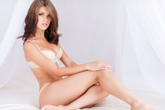 Beauty with perfect curves. Royalty Free Stock Image