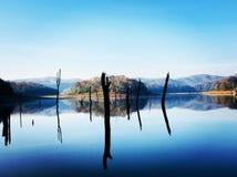 Beauty of Periyar. Periyar Lake,Tamil Nadu royalty free stock image