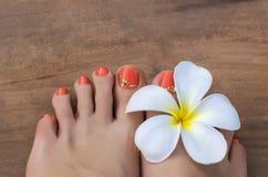 Beauty photo of nice orange pedicured feet Royalty Free Stock Photo