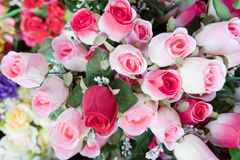 Beauty of pink rose bouquet flower Stock Image