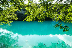 Beauty of Plitvice National Lakes Stock Image