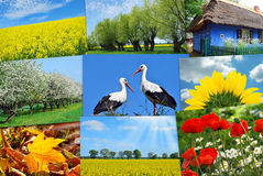Beauty of Poland-collage Royalty Free Stock Image
