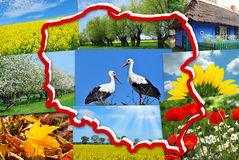 Beauty of Poland-collage. White and red contour of Poland on background with collage of polish typical landscapes and nature symbols Royalty Free Stock Photography