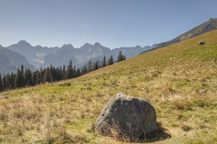 Polish landscape in Tatras mountains. Royalty Free Stock Images