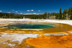 Beauty Pool at Upper Geyser Basin. Yellowstone National Park, Wyoming, USA Stock Photography