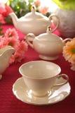 Beauty Porcelain Pottery Stock Photo