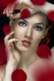 Beauty portrait Stock Photography