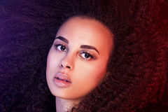 Beauty portrait of african american girl. Stock Photography