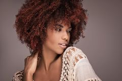 Beauty portrait of girl with afro hairstyle. Beauty portrait of african american woman with afro hairstyle and glamour makeup Royalty Free Stock Photography