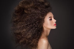 Beauty portrait of girl with afro. royalty free stock photography