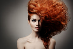Beauty Portrait. Hairstyle Stock Photos