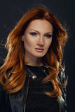 Beauty portrait of handsome redhead beauty Royalty Free Stock Images