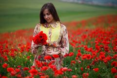 Beauty portrait of long haired young model, seated in a poppies field, summer day background royalty free stock photography