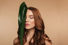 Beauty portrait of sensual ginger woman with long hair royalty free stock image