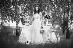 Black and white art monochrome photography. Beauty portrait of a very pretty young girl. Doll appearance. Woman with brown hair in a pink wedding dress on Stock Photography