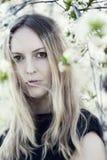 Beauty portrait of young beautiful woman Stock Image