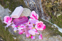 Beauty products in the nature Royalty Free Stock Photos