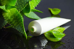 Beauty products for spa with aloe vera Stock Image