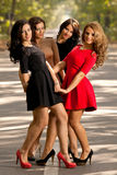 Beauty queens Royalty Free Stock Images