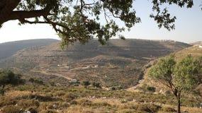 The beauty of Ramallah mountains stock image