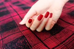 Beauty Red Manicure Nail with Gel Polish. Woman Hand with Red Nails on the Red Scot Fabric Background. Great for Any Use Stock Images